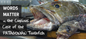 Words Matter - or - the Curious Case of the Patagonian Toothfish
