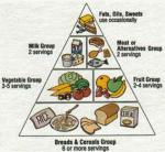 The food pyramid is a shaped guide of healthy foods divided into sections to show the recommended intake for each food group. The first was published in Sweden in 1974. The most widely known food pyramid was introduced by the United States Department of Agriculture in 1992.